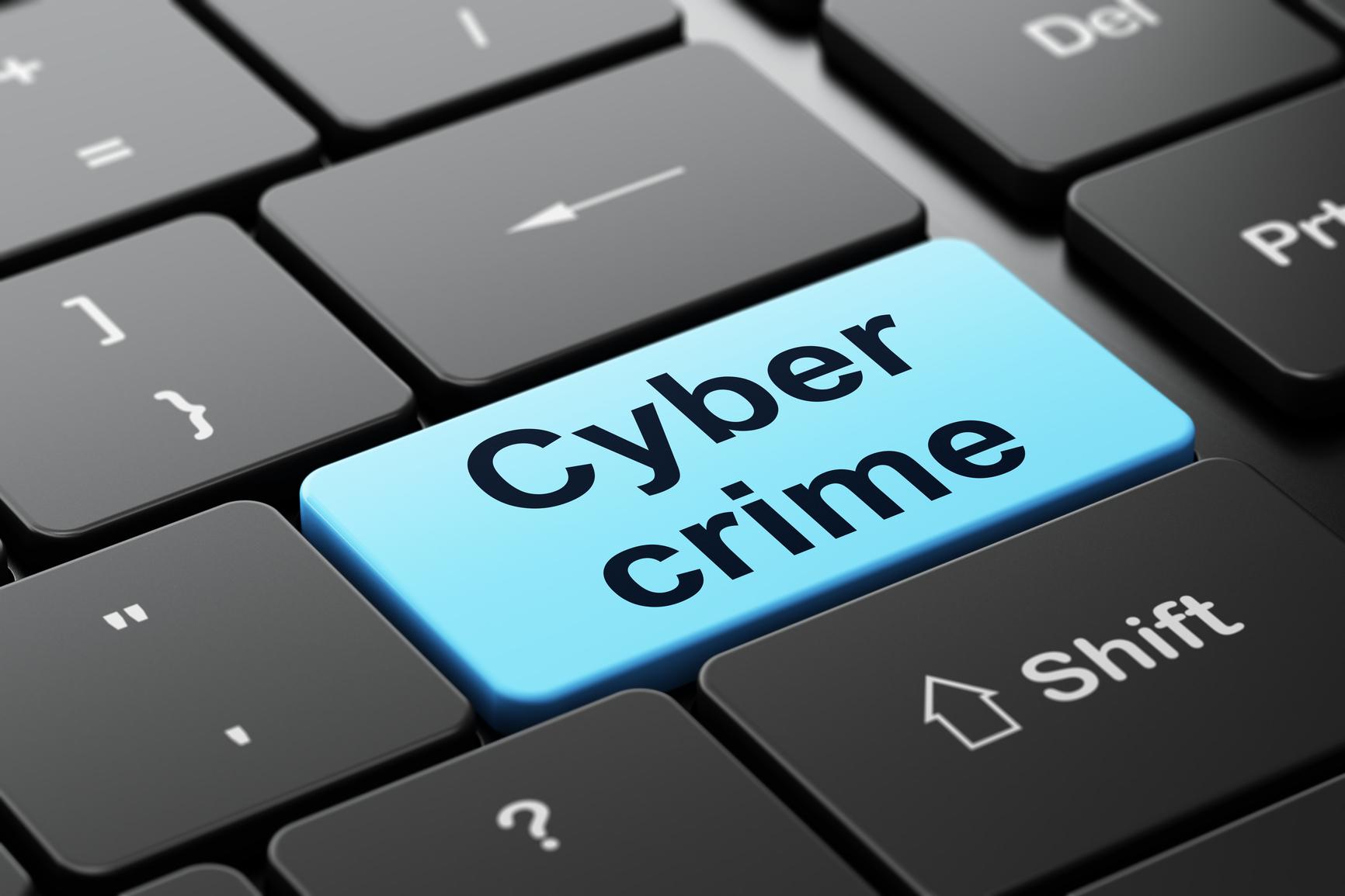 Βόζεμπεργκ_ευρωβουλευτής_κυβερνοέγκλημα_cybercrime_πρόληψη_έκθεση_Στρασβούργο_προληπτικά_μέτρα