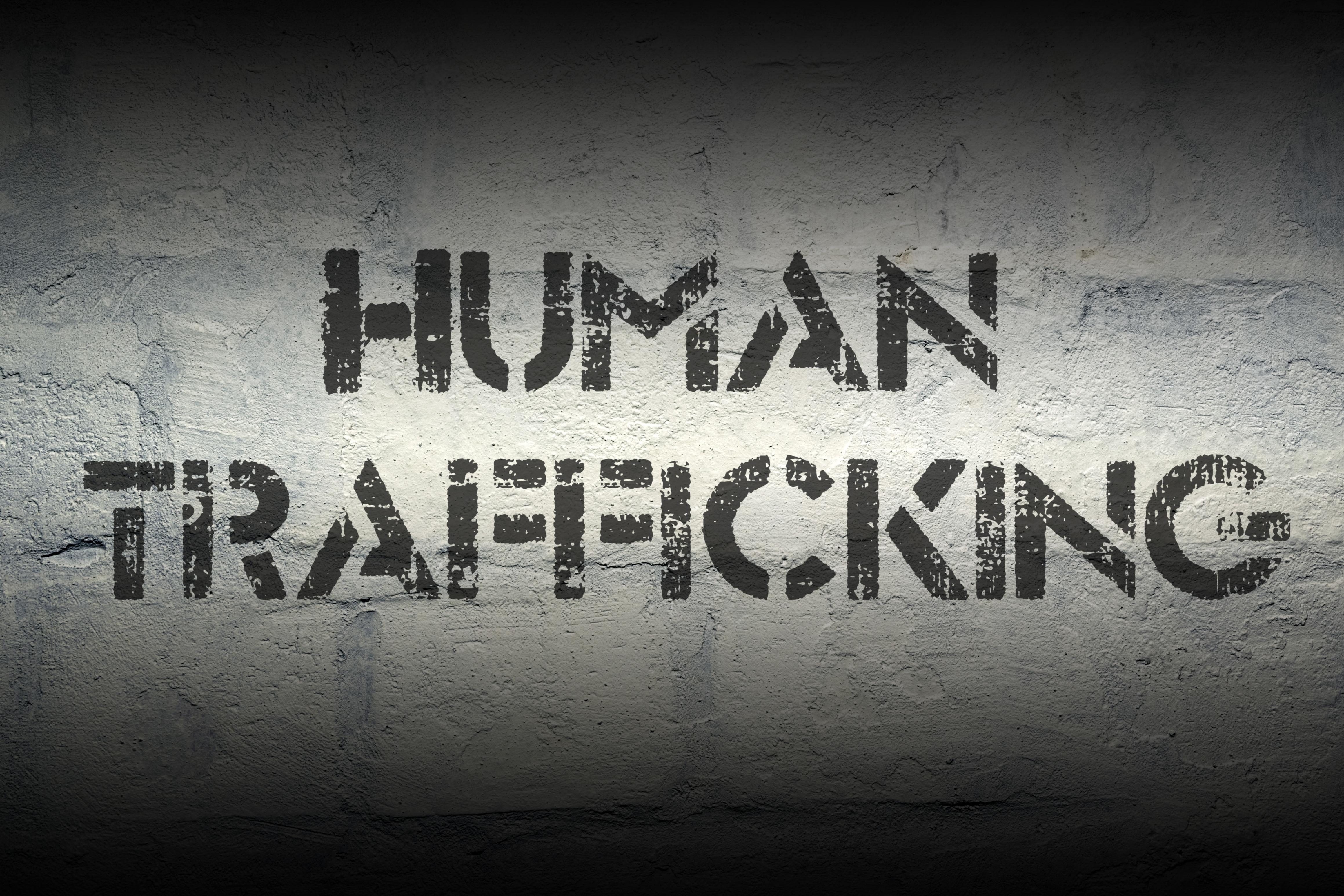 Βόζεμπεργκ_ευρωβουλευτής_ΝΔ_παρέμβαση_ΕΚ_Επιτροπή Ελευθεριών_HumanTrafficking_ΕμπορίαΑνθρώπων_Ενιαίοζήτημα_εφαρμογή_νομοθετικό_πλαίσιο