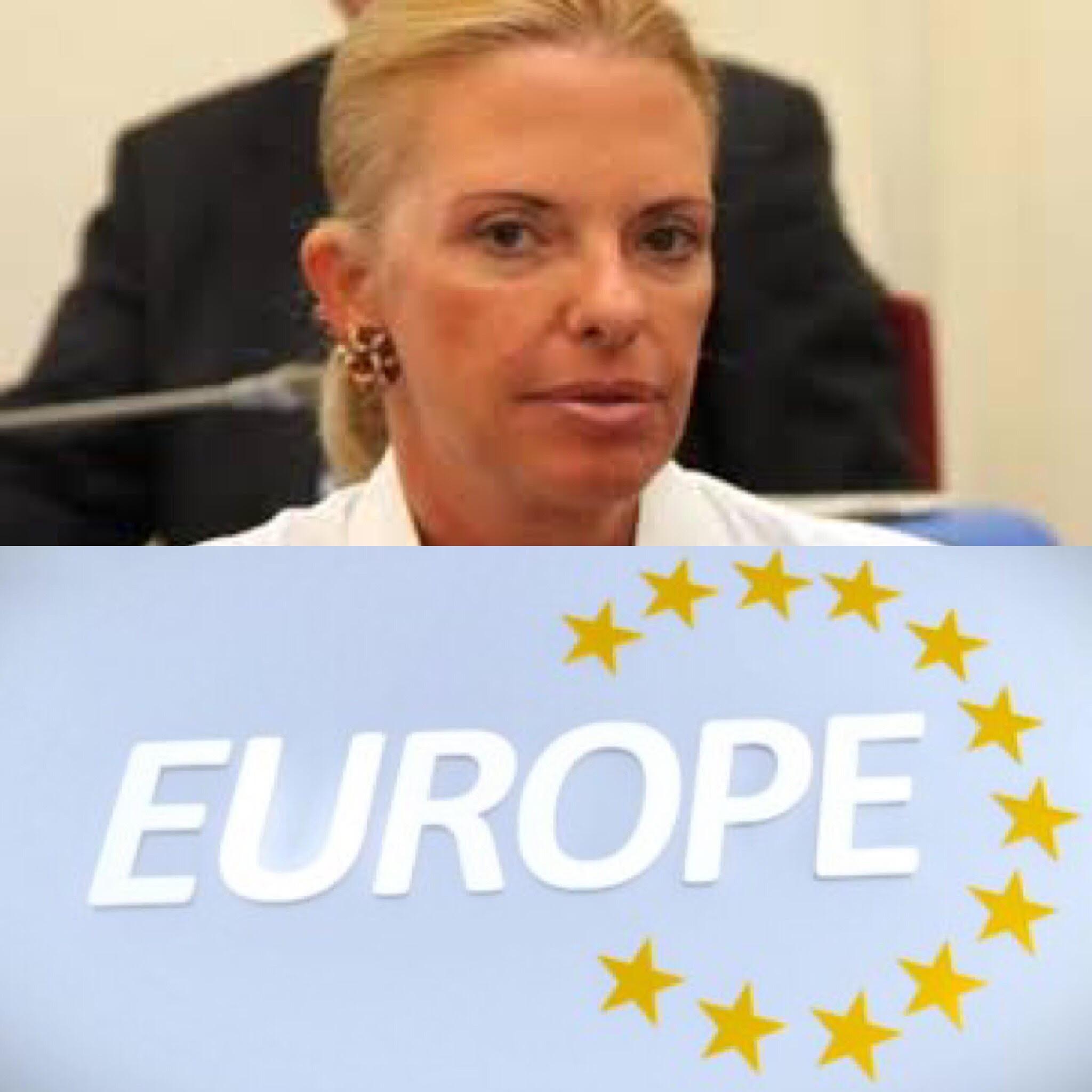 Βόζεμπεργκ_ευρωβουλευτής_Europe_Μπούρα_αποτίμηση_προσφυγική_κρίση_ολομέλεια_ΕΚ_Στρασβούργο