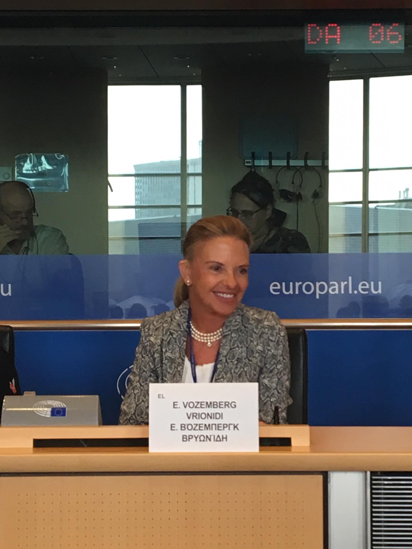 Αντιπρόεδρος_Ελίζα_Βόζεμπεργκ_FEMM_Δικαιωμάτα_Γυναικών